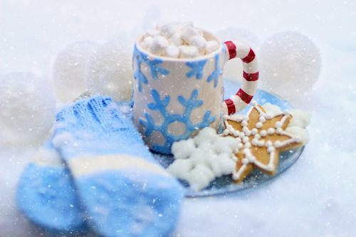 hot chocolate cocoa cookie