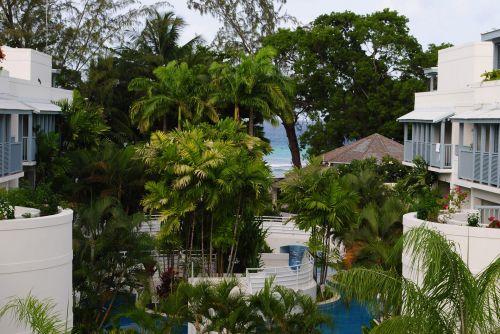 viešbutis, kiemas, karibai, delnus, medžiai, vanduo, balta, viešbučio vidinis kiemas