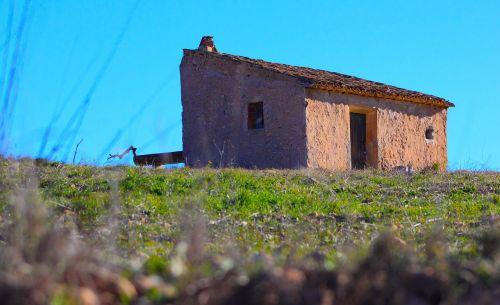 house field horizon