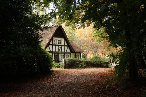 house timber frame thatched roofs