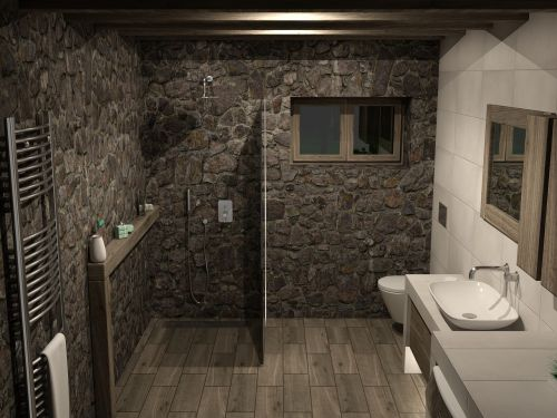 house bathroom architecture