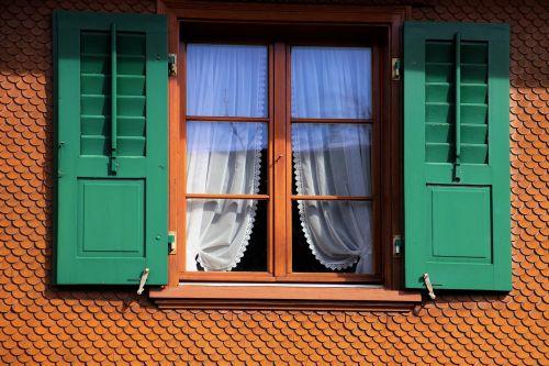house shutters green