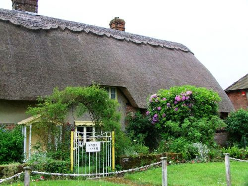 house thatch roof home