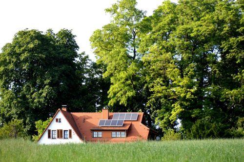 namai žalia,idilija,aš gyvenu žalia,nuo mušamo kelio,miškas,medžiai,gamta,gyventi,vasara,idiliškas,namie,pastatas,vasarnamis,poilsio namai,atostogų namai,poilsis,kraštovaizdis,taikus,žalias,pieva,sklypas,laisvalaikis,namai