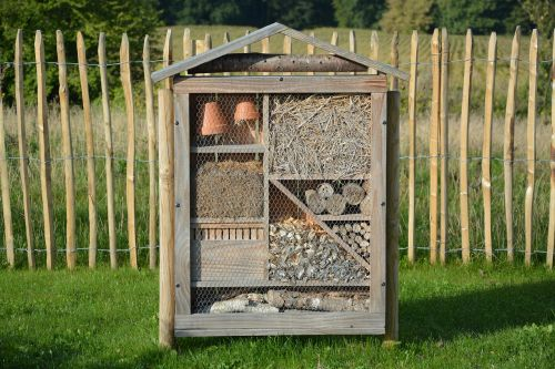 house insects hotel insects insects nest box