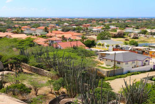 houses cacti aruba