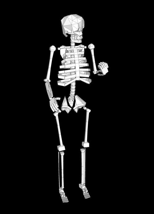Human Skeleton 2