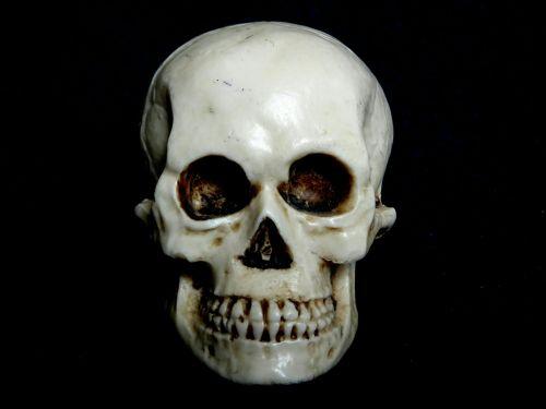 skeletas, skeletas, kaukolė, kaukolės, kaulas, kaulai, baugus, apsėstas, vaiduoklis, vaiduoklis, Halloween, miręs, mirtis, mirti, žmogaus skeleto kaukolė