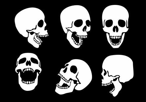 kaukolė, žmogus, priekinis, siaubas, balta, veidas, saldus, Halloween, mirti, dingo, juoda, žandikaulis, kapas, prarastas, gyvenimas, galva, nuobodus, fitnesas, pilka, dantys, tamsi, šypsena, kaulas, Išgyti, mirti, kritęs, kūnas, miręs, Burna, mirtis, gedėti, kapinės, sveikata, gamta, drumstas, nosis, makaronai, žmogaus kaukolės