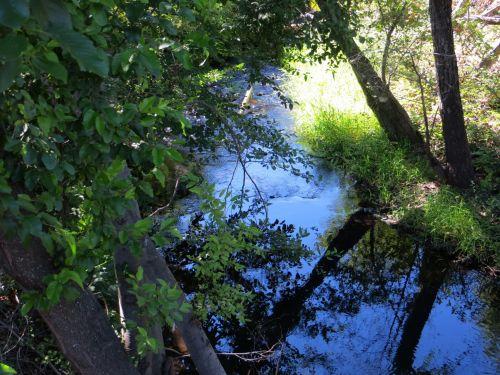 Humbug Creek, Folsom 70