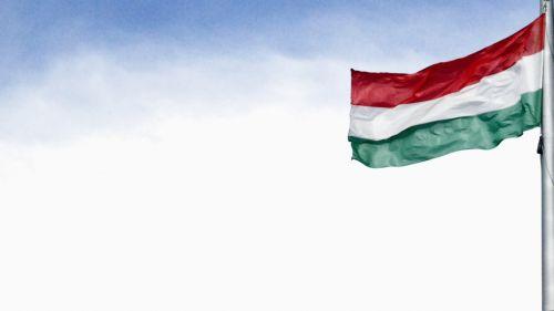 hungarian flag freedom love