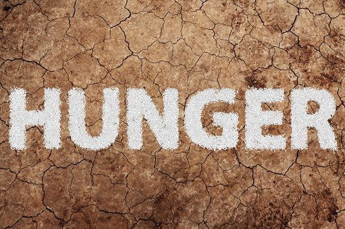 hunger  food  nutrition