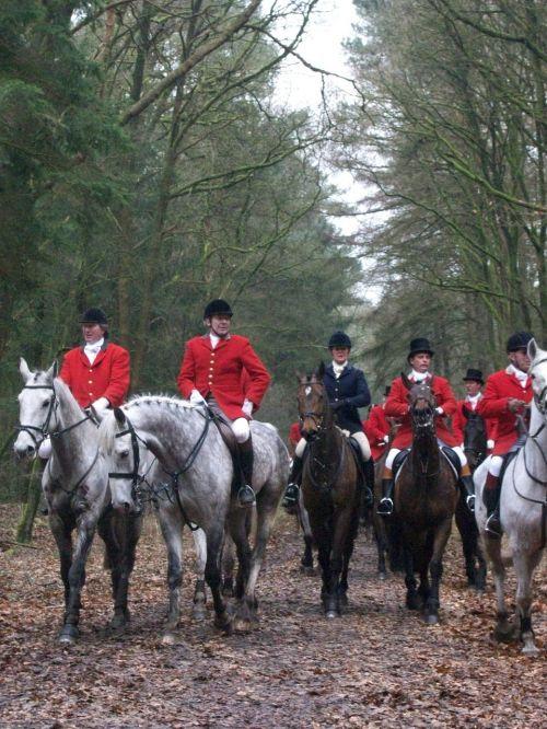 hunting horses drag