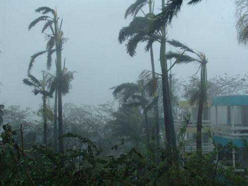 hurricane devastation destruction