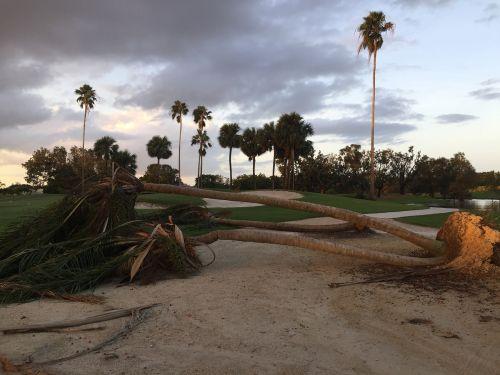 hurricane storm damage storm