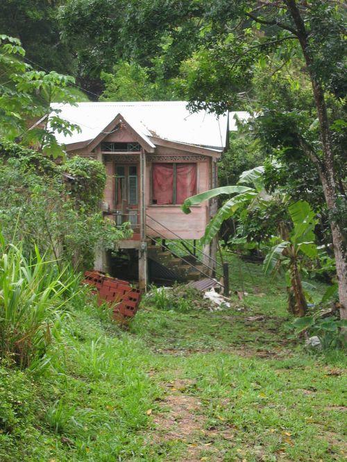 hut caribbean plantation