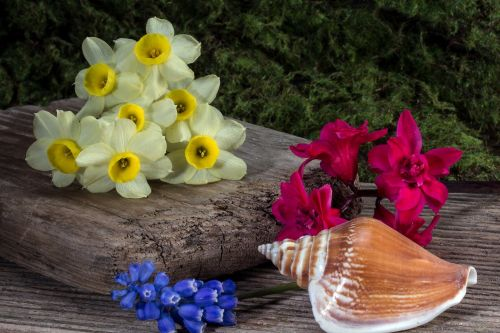 hyacinth wood wooden board