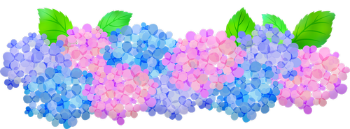 hydrangeas clip art  floral  pink and purple hydrangeas
