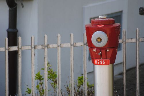 hydrant red garden