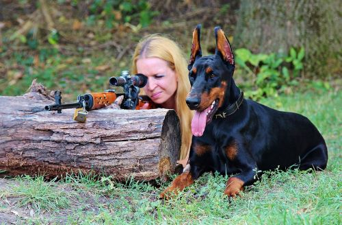 weapon doberman dog