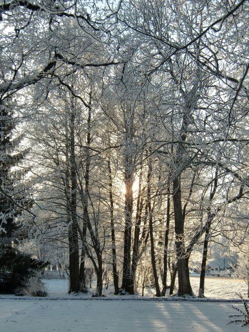ice snow winter