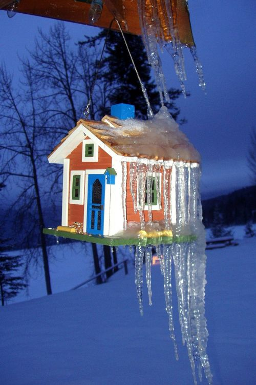 ice cold winter