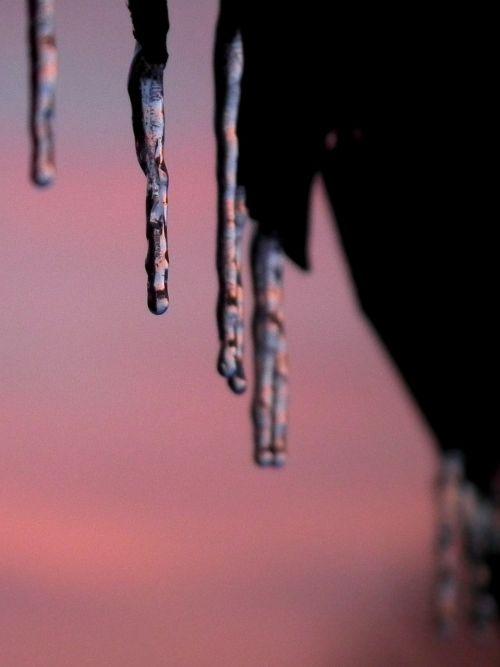 ice icicle sunset
