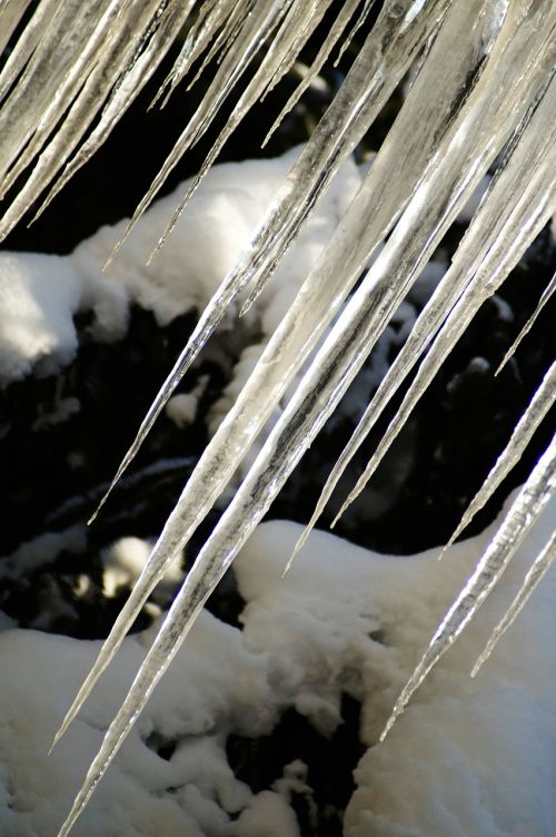 icicle ice winter