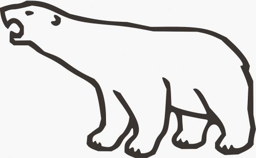 ice bear animal bear