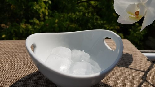 ice cubes  shell  summer