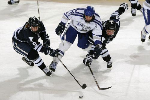 ice hockey puck players