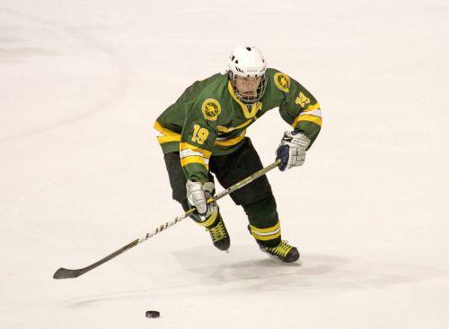 ice hockey puck hockey stick