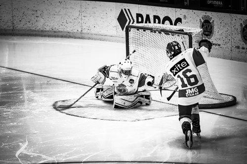 ice hockey  hockey  ice