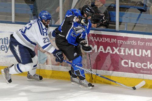 ice hockey goal sport