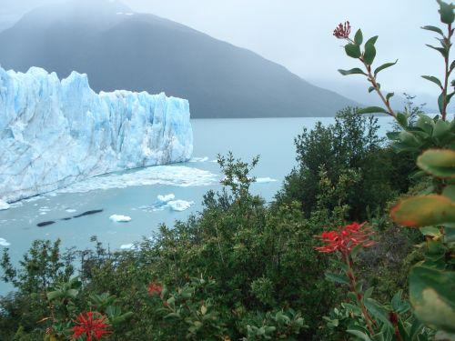 iceberg ice glacial