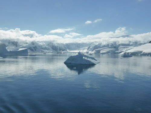 icebergs antarctic peninsula southern ocean