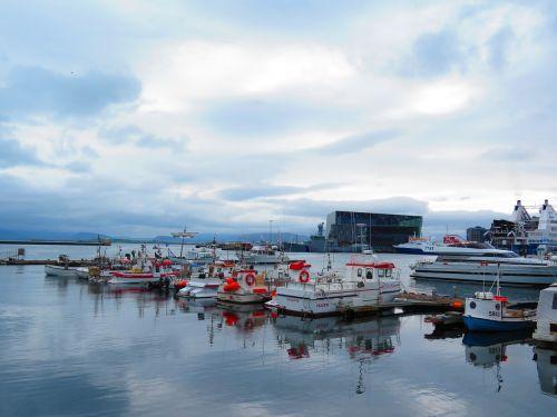 iceland,Reikjavikas,uostas,harpa