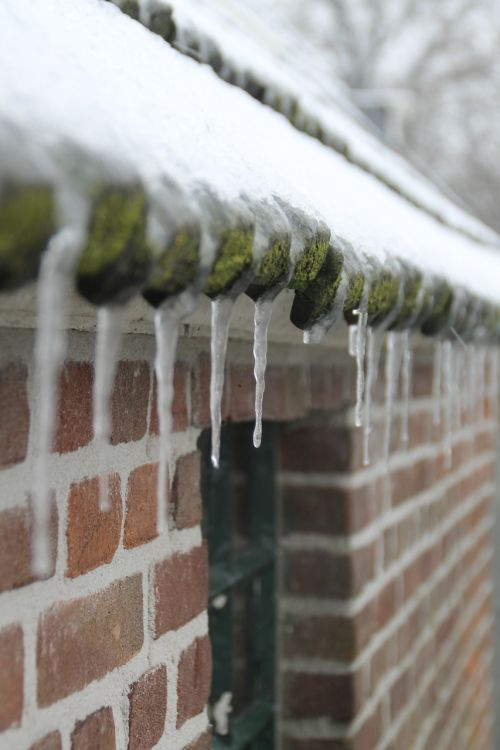 icicle snow winter