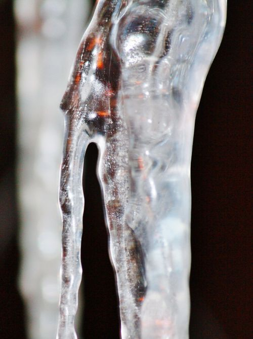 icicle cold winter