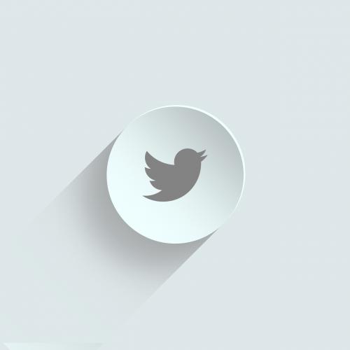 icon twitter icon twitter