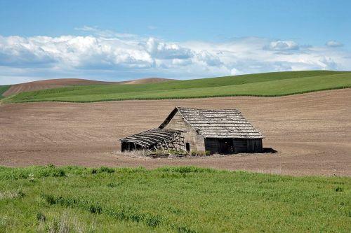 idaho landscape field