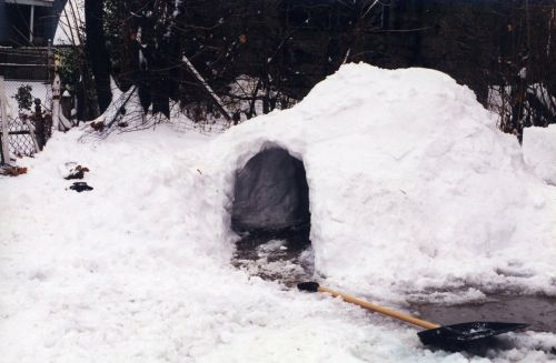 igloo snow fort