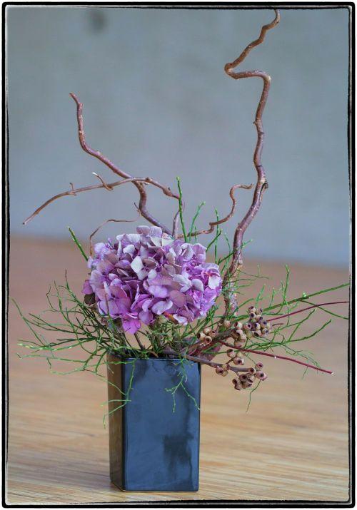 ikebana flower violet