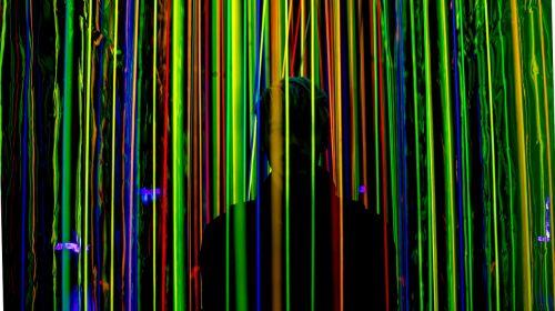 illusion image portrait