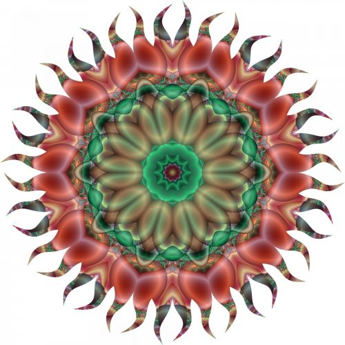 Illusive Flower