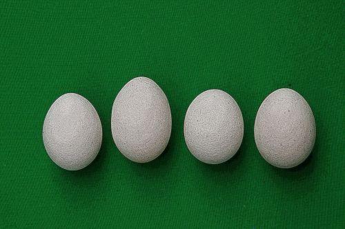 Illustrated Eggs