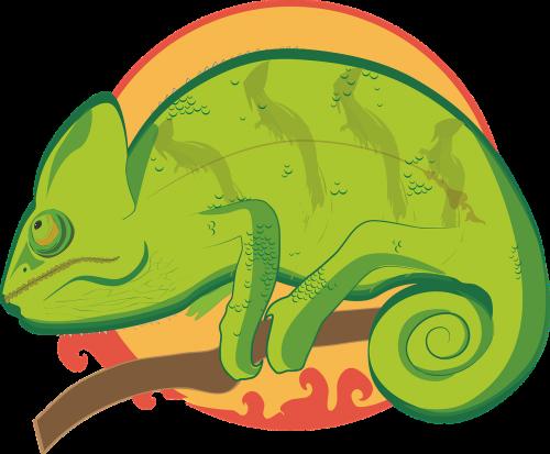 illustration chameleon colorful