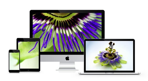 imac  flowers  desk