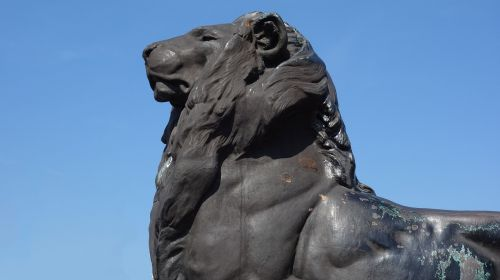 image sculpture lion