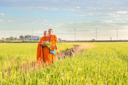 พระ buddhism faith